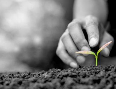 If You Don't Choose Abundance, Your Default Is Struggle