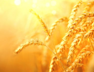 God Is Getting You Ready For Your Next Season of Abundance